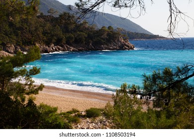 Beautiful sand beach with pine trees and blue sea with waves at warm sunny summer day. Mediterranean sea, Turkey.