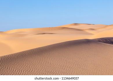 beautiful sand dune in sunrise in the sonoran desert