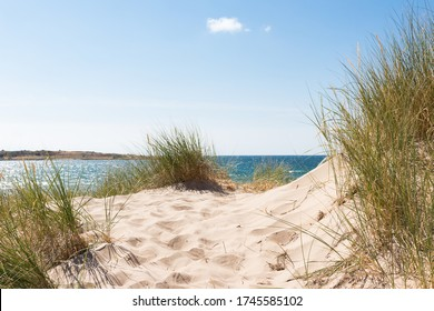 Beautiful sand dunes by the ocean