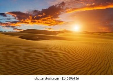 Beautiful sand dunes in the Sahara desert at sunset