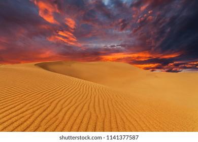 Beautiful sand dunes in the Sahara desert at sunset