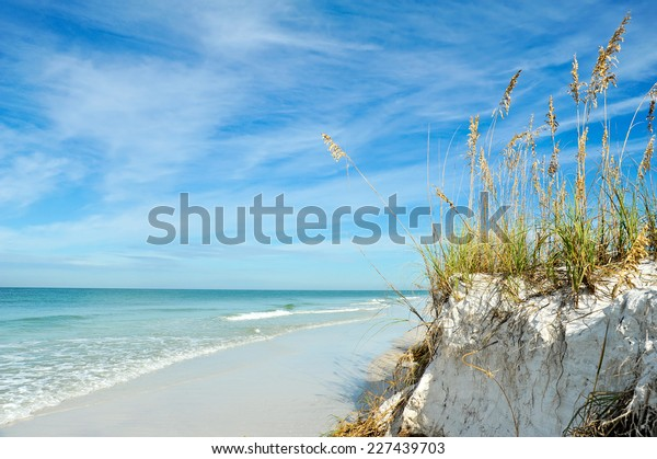 beautiful-sand-dunes-sea-oats-600w-22743