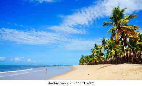 Beautiful, sandy beach with palm trees in Trancoso, near Porto Seguro, Bahia, Brazil