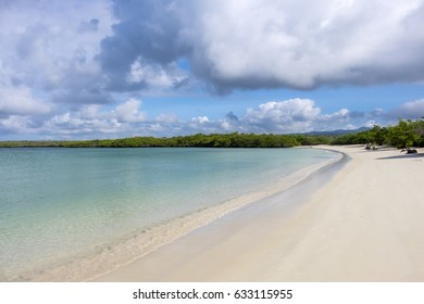 Beautiful Sandy Beach of Tortuga Bay in Santa Cruz, Galapagos Islands