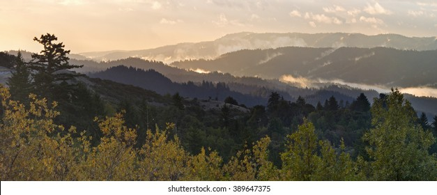 Beautiful Santa Cruz Mountains of California's Bay Area, covered in mist and fog at sunrise