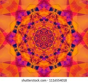 Beautiful scarlet kaleidoscope seamless illustration. Bright flower.