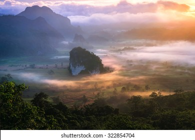 beautiful scenary in the north part of Thailand over the valley of mountain at sun rising giving a beautiful color on the mist in the field (selective focus and white balance shifting applied)