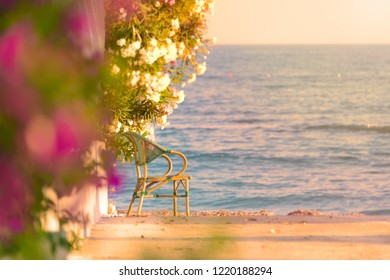 Beautiful scene with chair at beach with sea and sunset sky in background and foliage in foreground. Spot for relaxation.