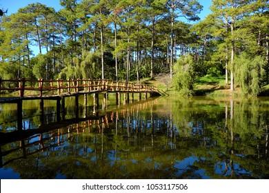 Beautiful scene of  Than Tho lake, Da Lat city, Vietnam in morning, row of pine tree reflect on  water, small bridge  cross a lake among pine forest, blue sky and fresh air make wonderful ecoto