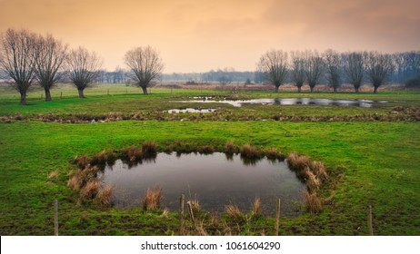 A beautiful scene. Trees in the background and a pond in front. Calming rural scenery in the countryside.