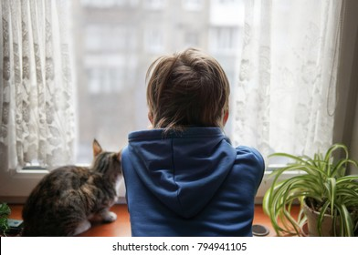 Beautiful scene two friends looking out fo window. Small boy with a cat stares out of window watching falling snow, focus on boy