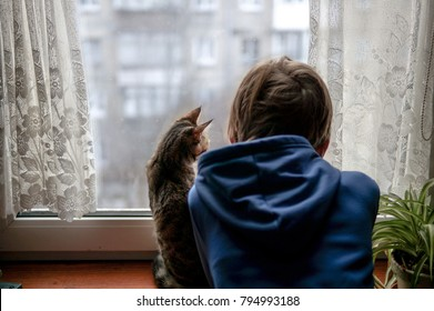 Beautiful scene two friends looking out fo window. Small boy with a cat stares out of window watching falling snow, focus on cat