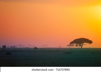 Beautiful scenery of African savannah at sunset