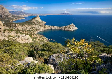 Beautiful scenery among trees overlooking the sea and the mountains off the Black Sea coast in Crimea