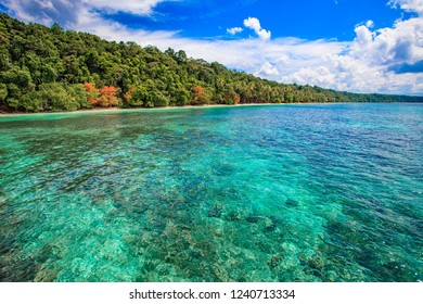 beautiful scenery with clear sea water on the island of Kakaban East Kalimantan