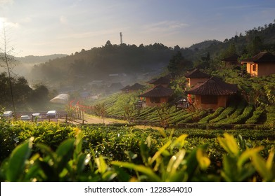 Beautiful scenery during sunrise at Chinese village among Tea Plantation at Ban Rak Thai , Mae Hong Son in Thailand is a very popular for photographers and tourists.