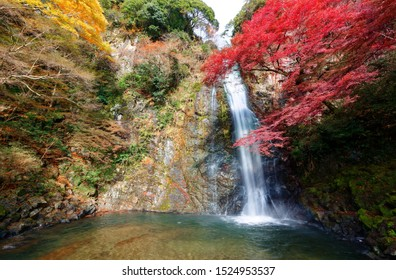 Beautiful scenery of a grand waterfall tumbling down the vertical rocky cliff into a green pond surrounded by colorful autumn foliage in Meiji no Mori Minoh National Park in Osaka, Kansai, Japan