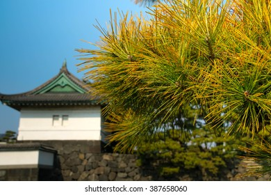 Beautiful scenery of the Imperial Palace?in Tokyo. called the Edo Castle.