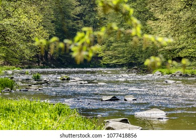 Beautiful scenery of landscape with stony river and spring forest. Oslava river, Czech Republic, Europe - Shutterstock ID 1077418856