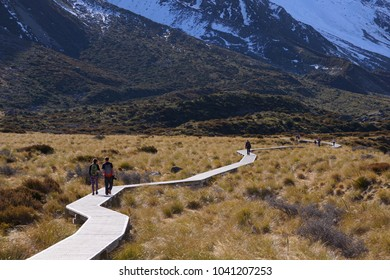 Beautiful scenery in Mount Cook National Park with wooden trek and mountain