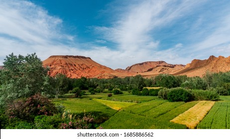 Beautiful scenery with red mountains and field in Morocco