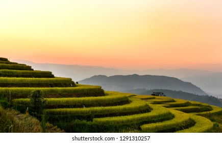 The Beautiful Scenery Of Rice Terrace At The North Of Thailand In The First Sunrise.Searching for the New Startup Opportunities