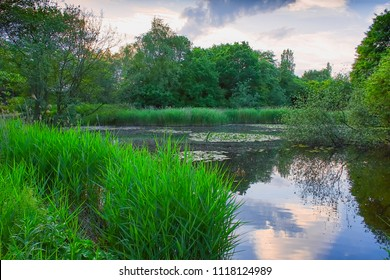 Beautiful scenery of Staffordshire, Uk.Westport lake nature reserve in woodland near Stoke on Trent, Uk on summer day.Calm and tranquil place.Scenic landscape uk.Sky reflection in water.Serenity.