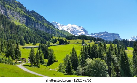 Beautiful scenery in summer time at Switzerland.