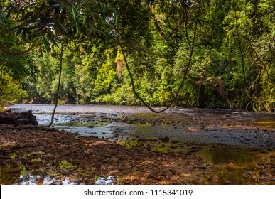 A beautiful scenery of the Tahan River at a shaded pebbly riverbed, about 1200 metres below the cascade of Lata Berkoh in Taman Negara National Park, Pahang, Malaysia.