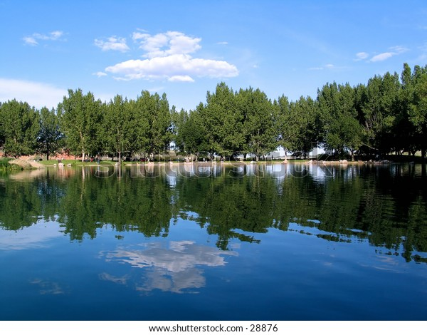 Beautiful scenery taken from a boat, Trees, reflection.