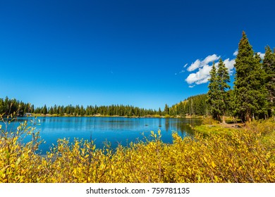 Beautiful scenery in Telluride, Colorado, with fir trees, lake and snow covered mountains, on a bright, sunny, day