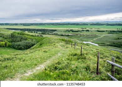 Beautiful scenery and views. Green grass fields, wild flowers, old wood fence, Bow River and cloudy skies at Glenbow Ranch Provincial Park in Cochrane, Alberta, Canada