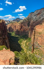 Beautiful scenery in Zion National Park with the virgin river, Hiking along the Angel's Landing trail, Utah, USA