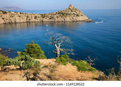 Beautiful scenic landscape of the Crimean coast, bay behind the cape, trees and the sea