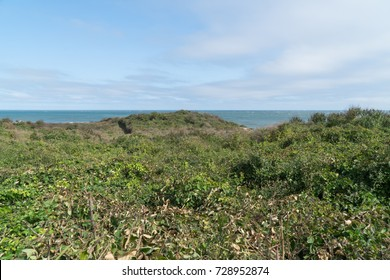 Beautiful scenic overlook view of coastline tropical forest along the ocean during the day time