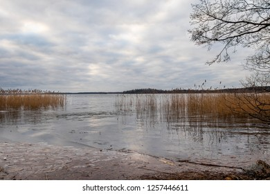 Beautiful scenic tranquil winter landscape of ice, water and reed against a cloudy sky.