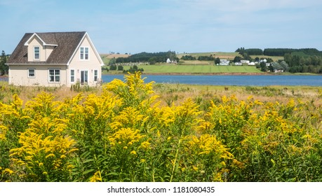 Beautiful Scenic View of a Little House by the Sea with Golden Rod in the Foreground and Farmland in the Background, Victoria By the Sea, Prince Edward Island, Canada