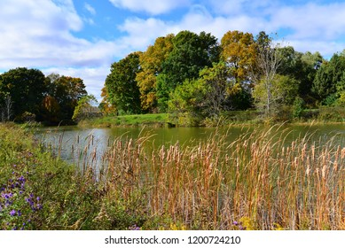 A beautiful scenic view of a pond in autumn with the leaves ranging from green with yellows and orange  under a blue clouded sky.