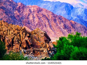 Beautiful scenic view - rugged rock and green trees against the background of distant colorful mountain range near Stagna Gompa, Leh, Ladakh, Himalayas, Jammu & Kashmir, Northern India