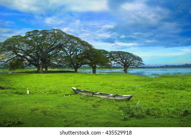 Beautiful scenic view of the Tissa Wewa lake, few trees, bright green duckweed and old traditional wooden boat against the background of cloudy sky in Tissamaharama, Sri (Sry) Lanka island, South Asia