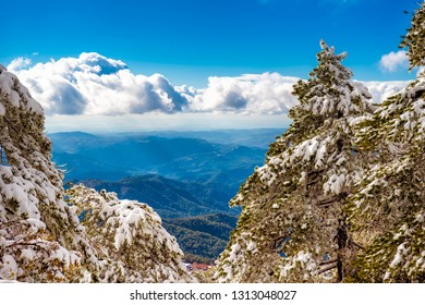 Beautiful scenic winter mountain landscape of Troodos mountains. Cyprus.