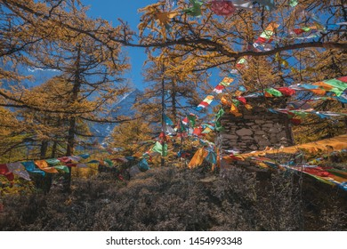 Beautiful Scenic of  Yading Natural Reserve, Daocheng , Sichuan - China ( Words on Chanting's flag is chant words for praying )