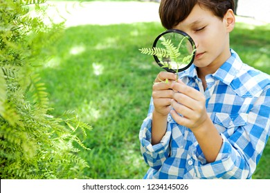 Beautiful school boy using magnifying glass to study green leaves in park, outdoors. Healthy child looking though lupe, observing nature, educational recreational lifestyle.