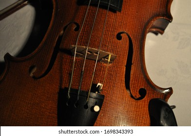 beautiful scrolled string instrument: violin