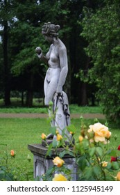 Beautiful sculpture and roses in the park. Morshyn, Ukraine.