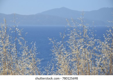 Beautiful sea and mountain view in Corsica