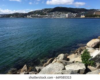 Beautiful sea Oriental Bay in Wellington