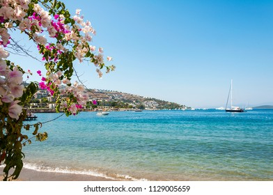 Beautiful sea view with bougainvillea flower.