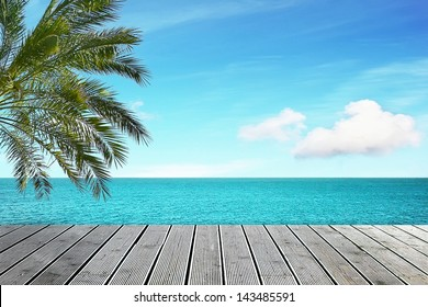 Beautiful sea view with palm tree on sunny day