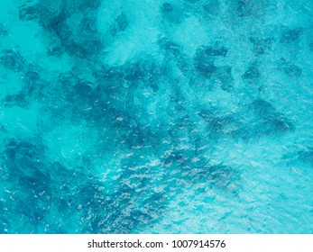 Beautiful sea view, shot by drones. Coral reef Aerial view.